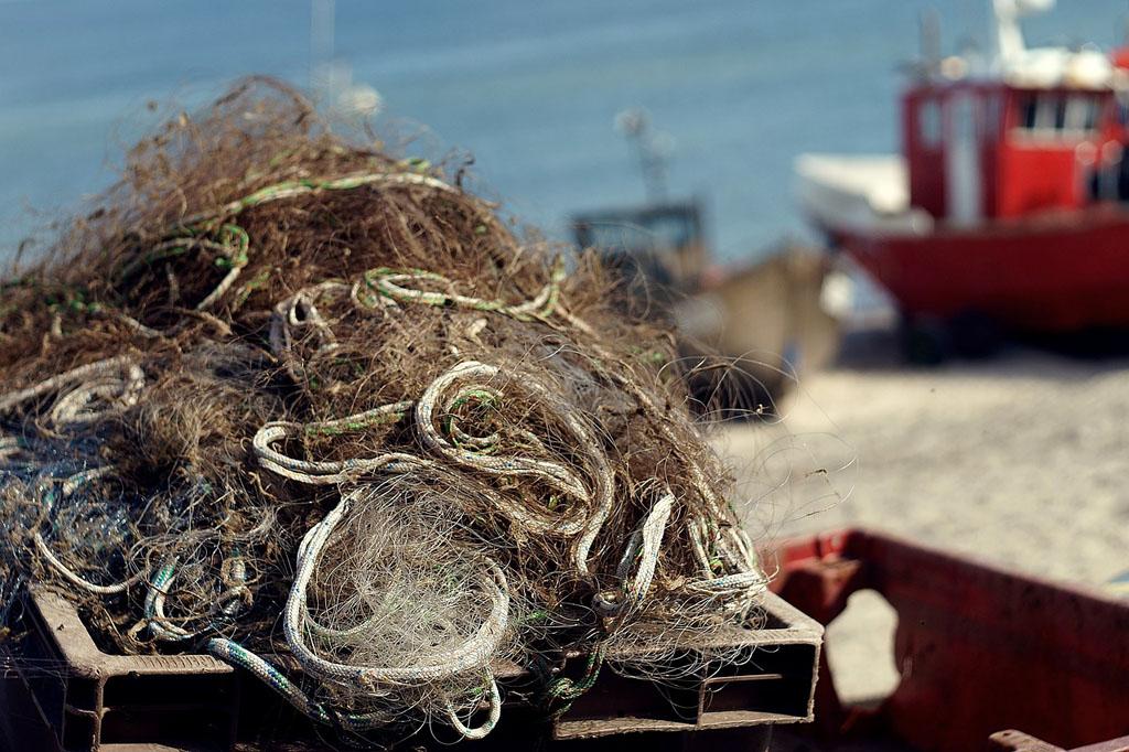 Berufsfischer dürfen mit großer Wahrscheinlichkeit durch die Dorsch-Fangquote 2018 wieder etwas mehr Fisch fangen. Foto: pixaby