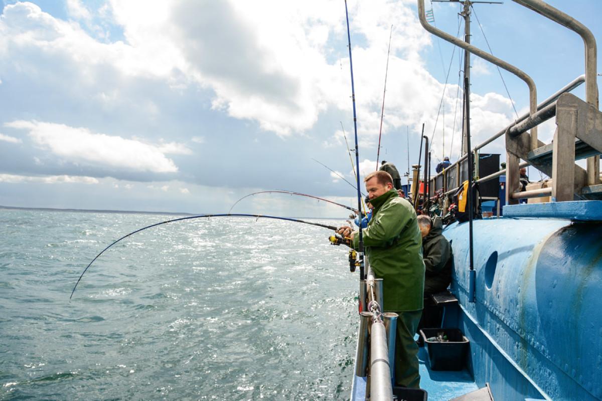 Krumme Ruten beim Hochseeangeln Nordsee und Ostsee. Foto: BLINKER/S. Rose