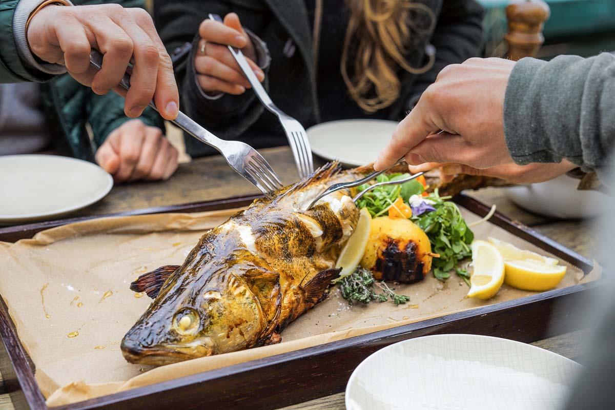 Zander grillen leicht gemacht. Mit der Anleitung der Gebrüder Eggert zaubert Ihr ein sehr leckeres Fischgericht. Foto: Oliver Hardt