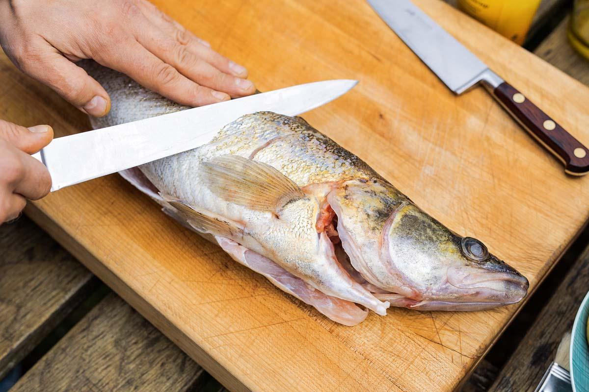 Den küchenfertigen Zander trocken tupfen und die Seiten leicht einschneiden. So gart der Zander gleichmäßig und die Marinade kann besser in den Fisch einziehen. Foto: Oliver Hardt