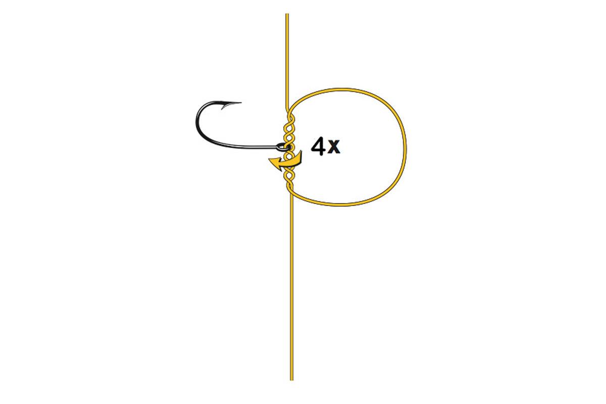 Drop-Shot-Knoten: Haken viermal durch die Schlaufe drehen. Grafik: BLINKER