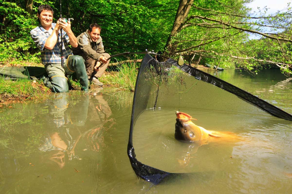Karpfenangeln liegt voll im Trend. Warum? Weil man dabei richtig große Fische fangen kann. Foto: BLINKER/O. Portrat