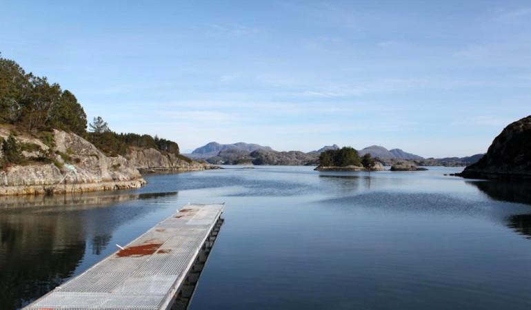 Vom Bootssteg aus lässt es sich gut Angeln. Foto: Borks