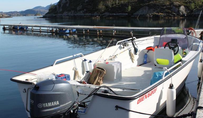 Das Angelboot ist mit einem 50-PS-Motor ausgestattet. Foto: Borks