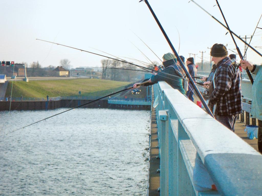 Angeln auf dem Rügendamm: Verbot wird Ende März 2018 aufgehoben