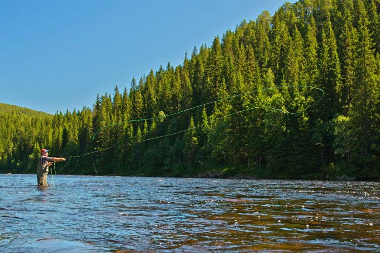 Beim Fliegenfischen werden die langen Zweihand-Ruten für das Fischen auf Lachs, Meerforelle, Hecht, Rappen, Zander und sogar Kuchen eingesetzt. Das Werfen lernen mit der Zweihand-Rute lohnt sich also. Foto: B.Kuleisa