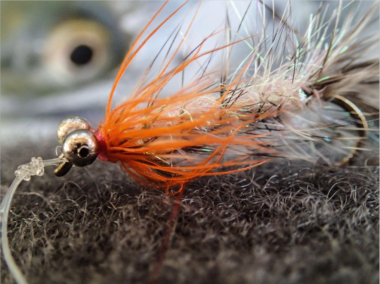 """Die Magnus, hier eine """"Hot Magnus"""" von Michael Werner, ist eine sehr gute Meerforellen-Fliege für den Winter! Von Dezember bis März ist diese Fliege eine gute Wahl. Foto: M. Werner"""