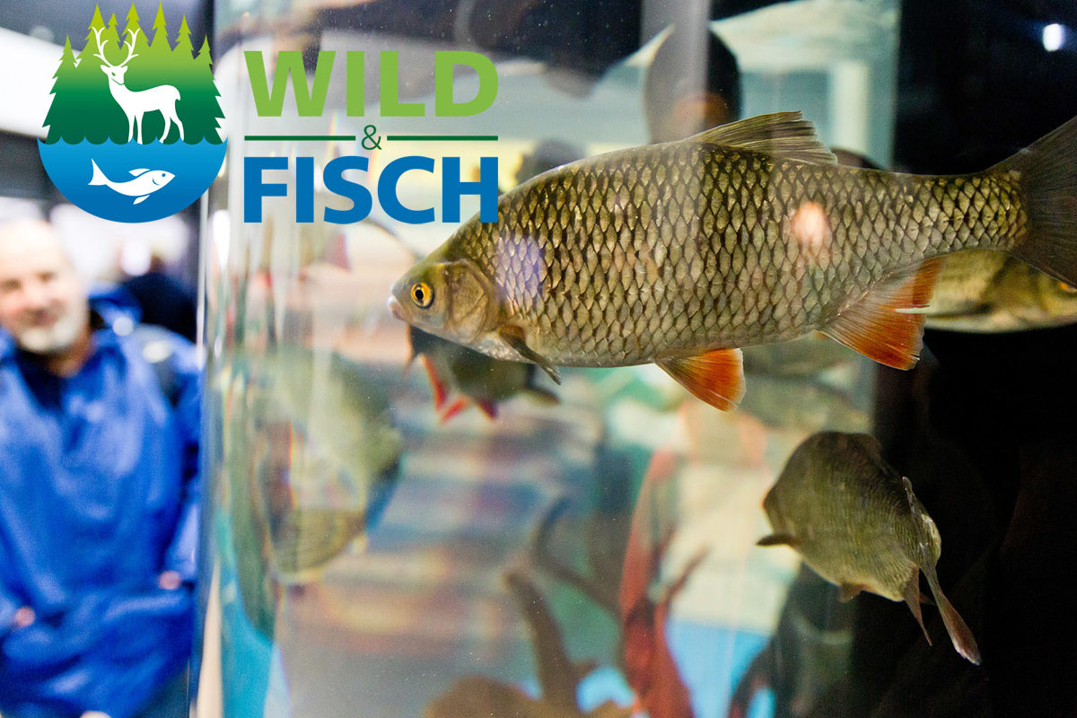 Die Messe Wild & Fisch 2018 findet bereits zum vierten Mal statt und ist sowohl für Jäger als auch Angler einen Besuch wert. Foto: Messe Offenburg / BRAXART