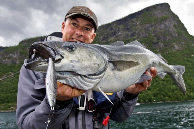 Das Angeln am Romsdalfjord beeindruckt mit landschaftlichem Reiz und großem Fischreichtum. Foto: M. Wendt