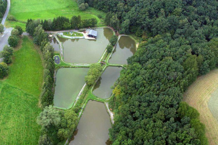 Der Angelpark Krumbachsmühle aus der Vogelperspektive. Fast alle einheimischen Süßwasserfische tummeln sich in den sieben Teichen. Foto: Angelpark Krumbachsmühle