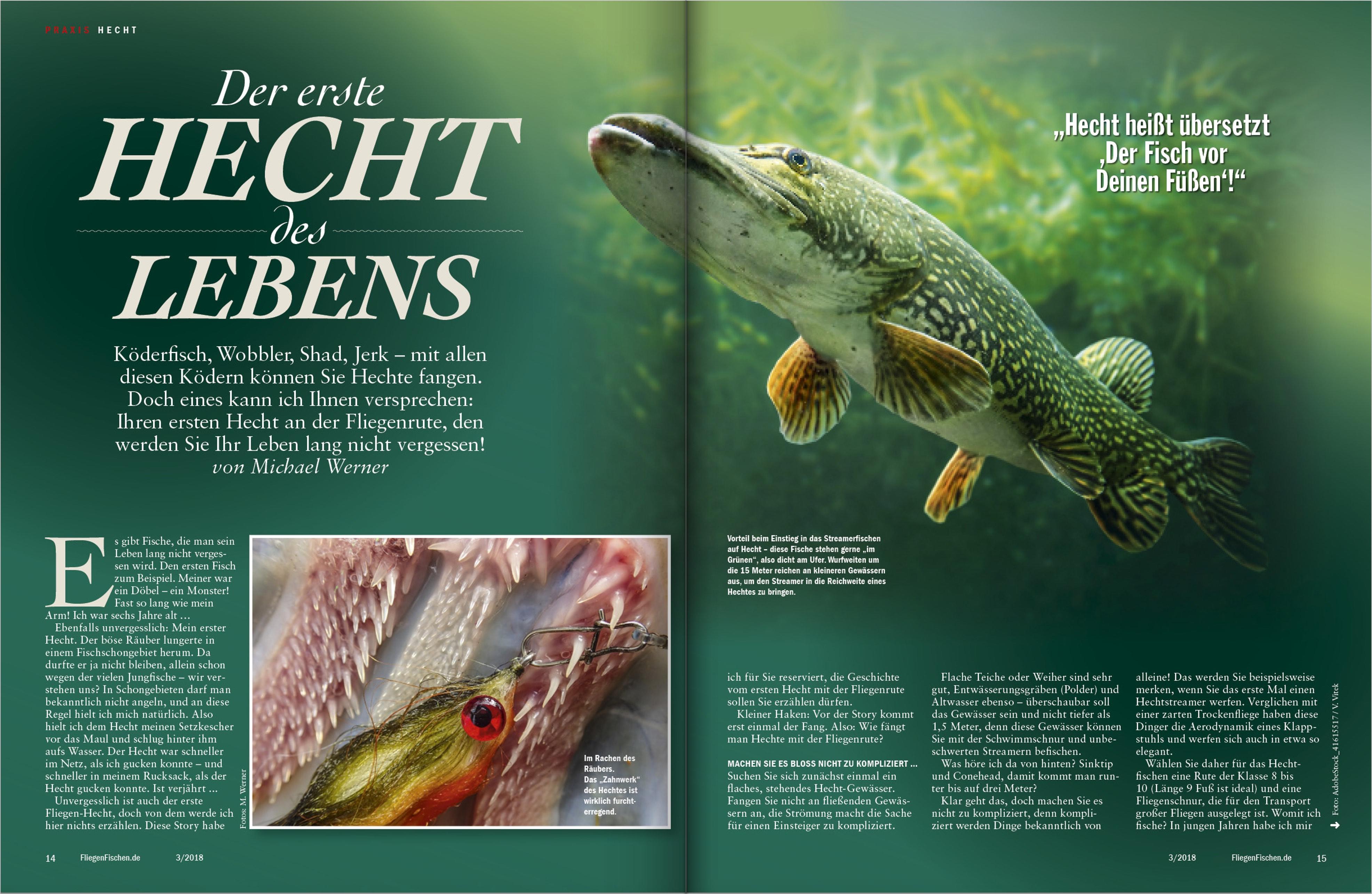 """Mehr zum Thema """"Fliegenfischen auf Hecht"""" lesen Sie in FliegenFischen, Ausgabe 3-2018. Insgesamt 22 Seiten mit Tipps, Tricks und Revieren finden Sie in dieser Ausgabe!"""