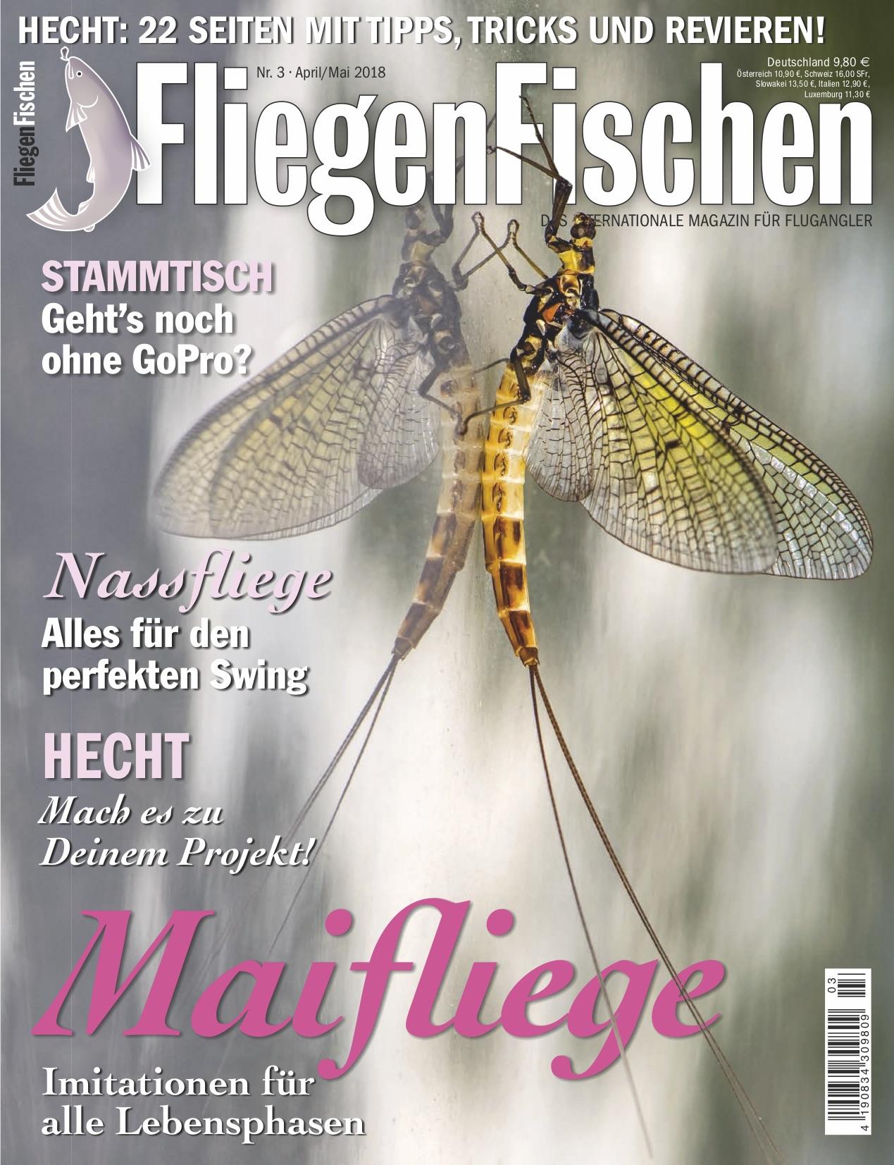 Dorsch Korn Angel-Buch//Ratgeber Angeln Dorschangeln Tipps/&Tricks Meeresangeln