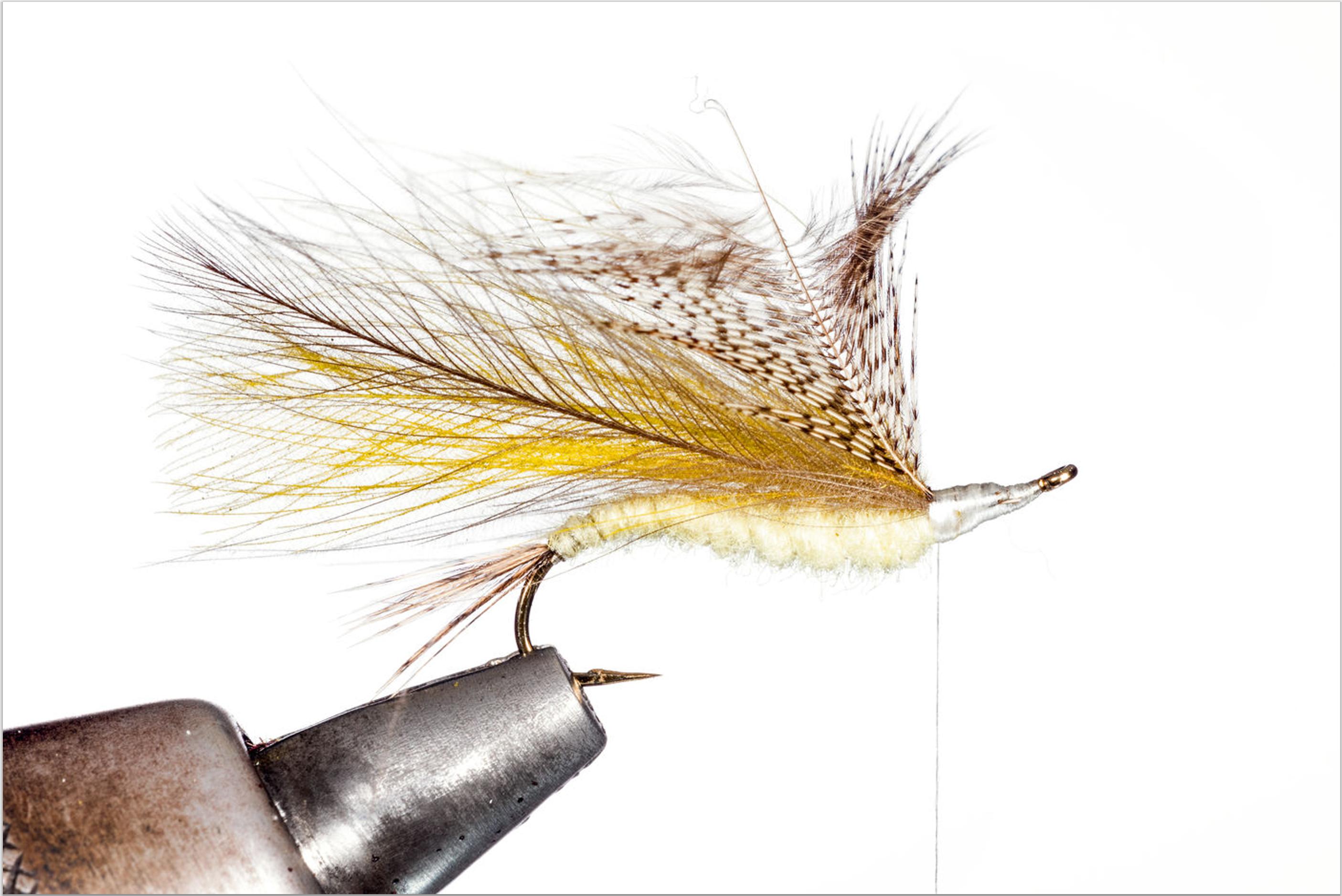 6. Nehmen Sie nun eine Rebhuhnfeder und legen Sie die Feder mit der Spitze ebenfalls am Thorax der Fliege an. Sichern Sie die Rebhuhnfeder mit dem Faden und entfernen Sie den unteren Rest der Feder.