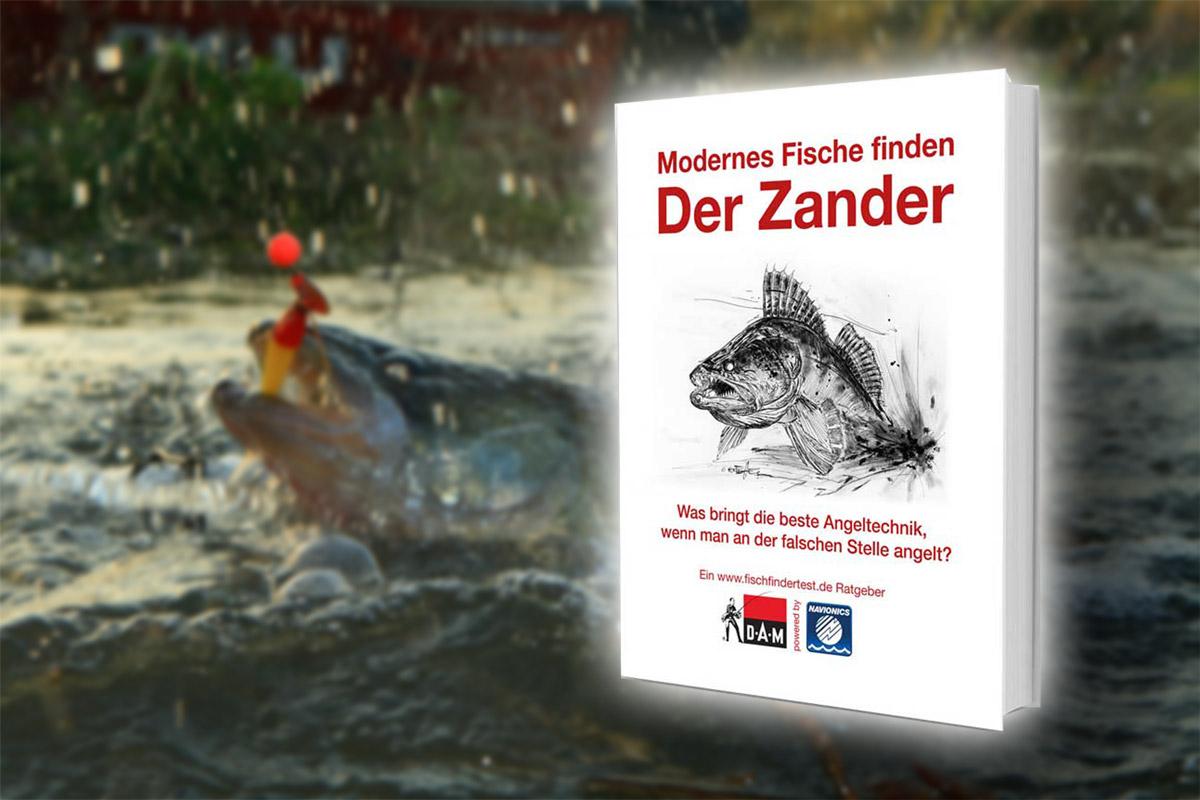 Angelbuch Empfehlung: Der Zander - Modernes Fische finden.