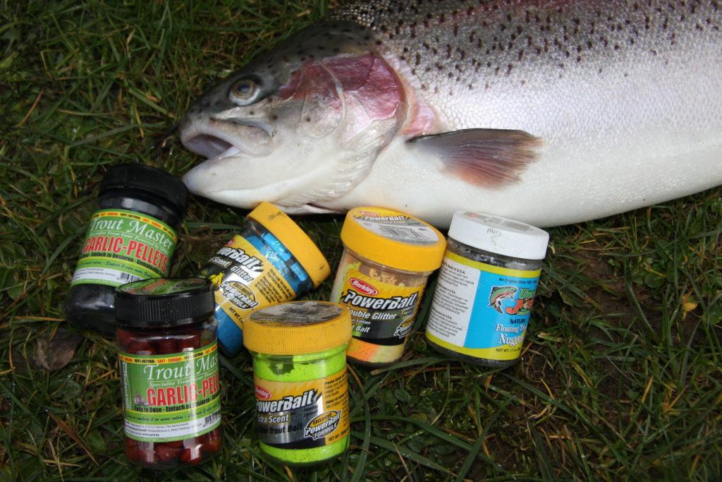 Jeder Angler hat Sorten von Forellenteig, auf die er schwört. Foto: ANGELSEEaktuell/G. Bradler