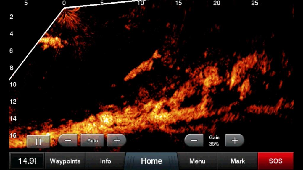 Das neue Panoptix LiveScope von Garmin zeigt die Unterwasserwelt in Echtzeit. Foto: GARMIN