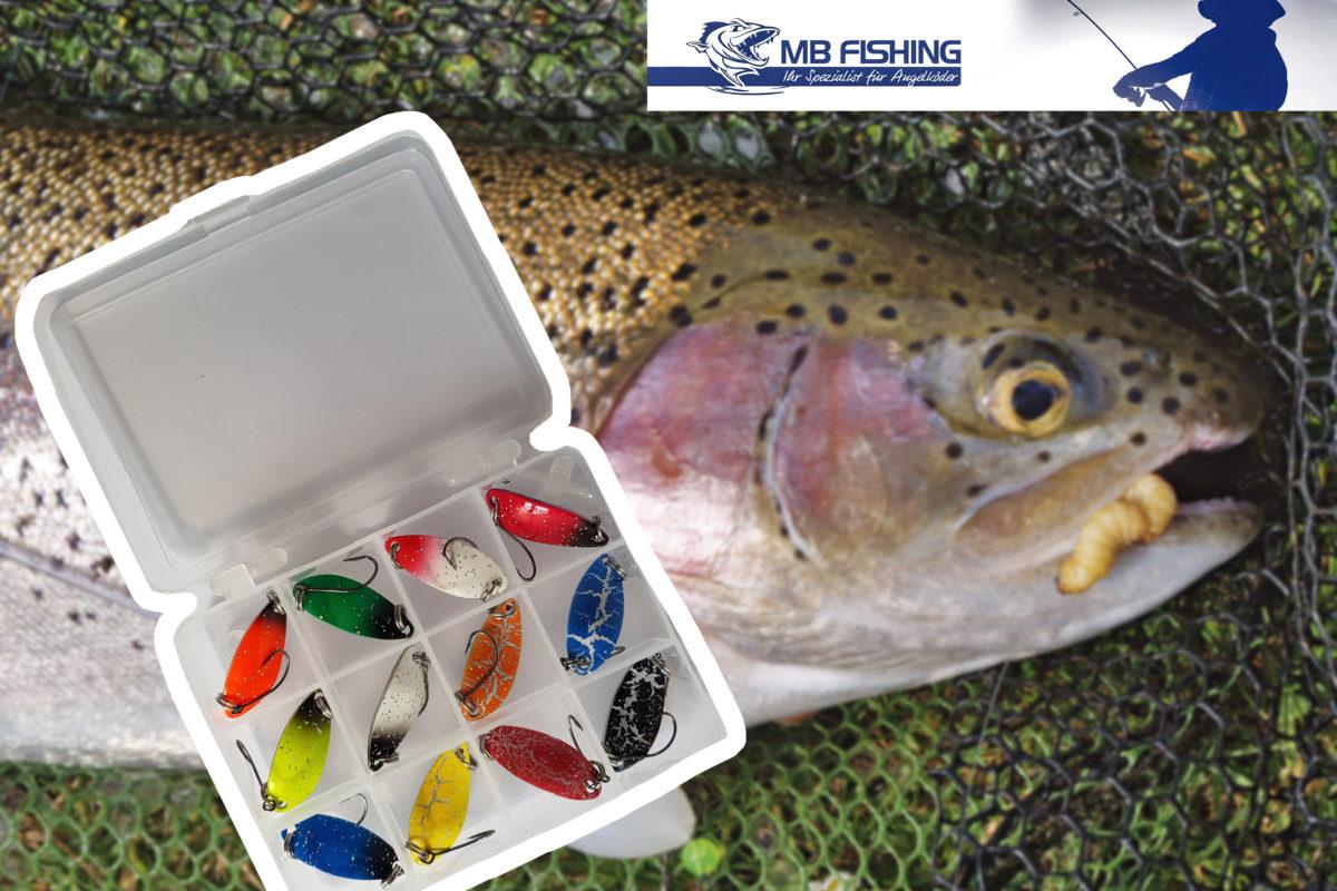 Diese Spoon-Box von MB-Fishing gibt es zu gewinnen.