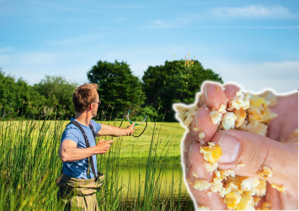 Weicht man beim Karpfenangeln mit Popcorn das Futter einige Minuten ein, lassen sie sich deutlich weiter schießen. Foto: BLINKER/W.Krause