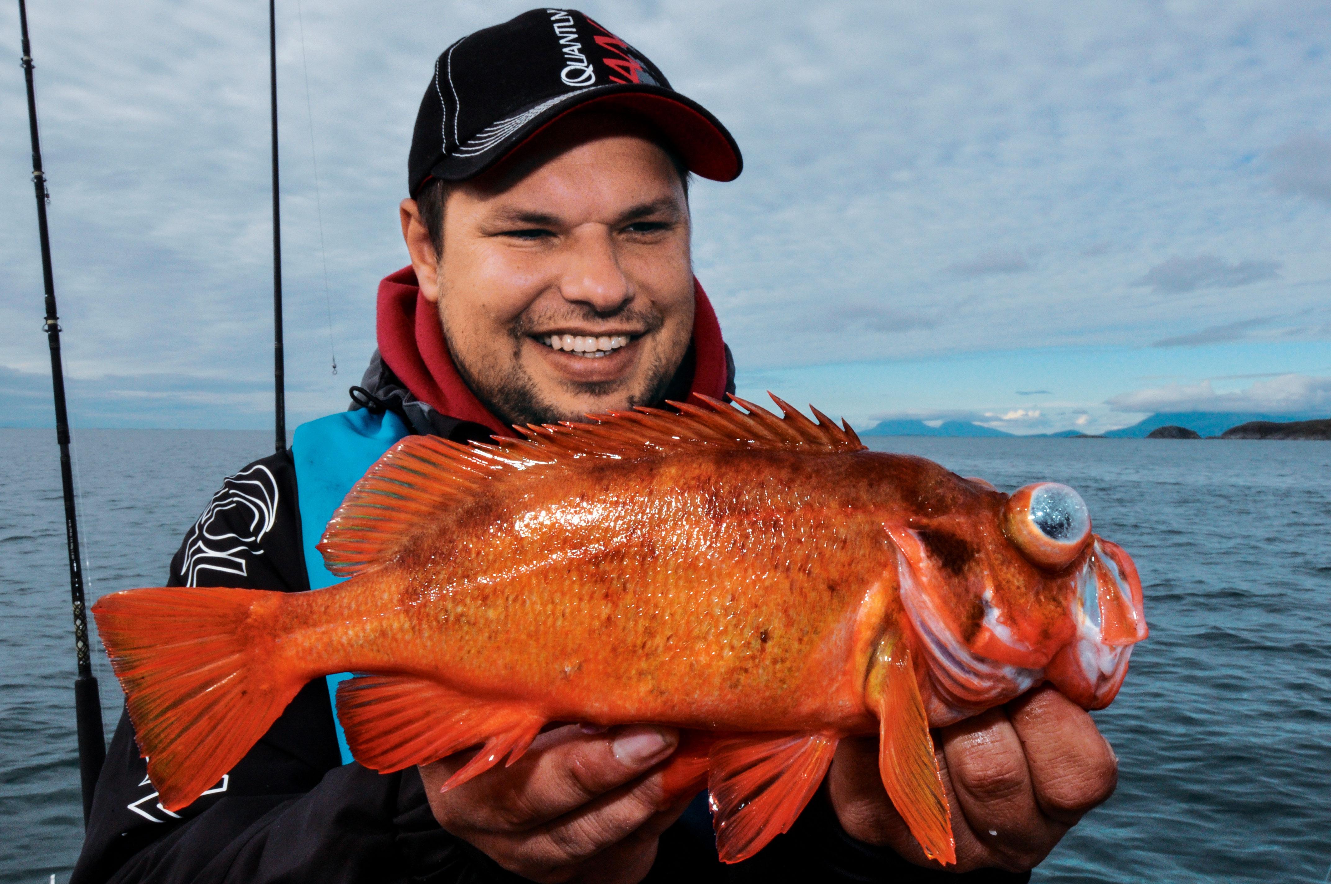 Rotbarsche sind beliebte Zielfische beim Meeresangeln in Norwegen.