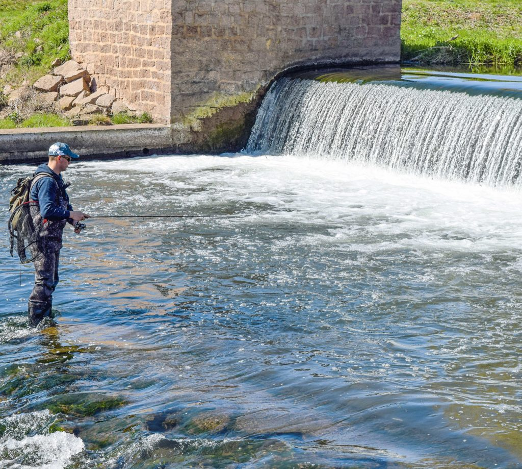 Das Rapfenangeln an Wehren ist sehr effektiv, das das Wasser aufgrund der starken Strömung sehr sauerstoffreich ist.