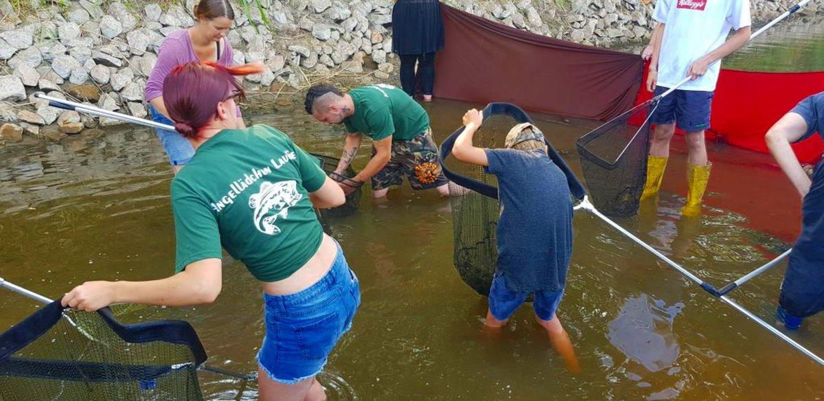 Fische retten an der Issel. Viele Helfer waren dem Aufruf von Torsten Rühl gefolgt. Foto: T. Rühl