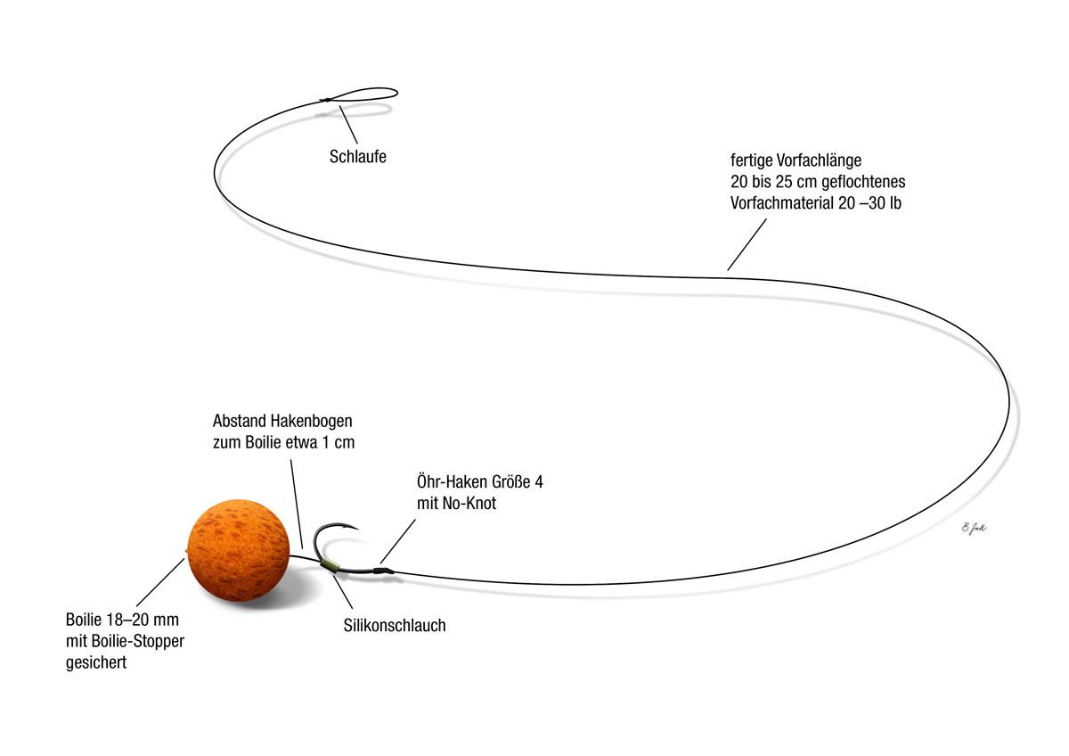 Das verbesserte Standard Hair-Rig als einfache Karpfenmontage. Grafik: BLINKER/B. Gierth