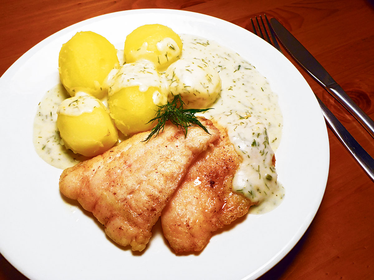 Rezept mit zartem Zanderfilet: Zander in Zitronen-Dill-Sauce. Foto: AngelWoche/N. Bremer