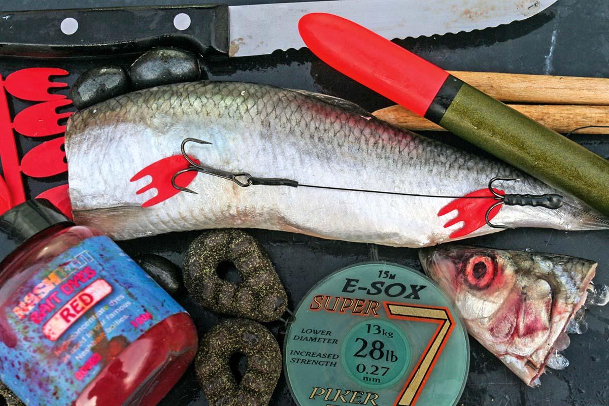 Heringe lassen sich gut einfärben. Auch rote Baitflags an den Drillingen sorgen für einen Extra-Reiz. Heringe sind einfach im Fischladen erhältlich und sollten in keiner Köderbox fehlen. Foto: D. Charman