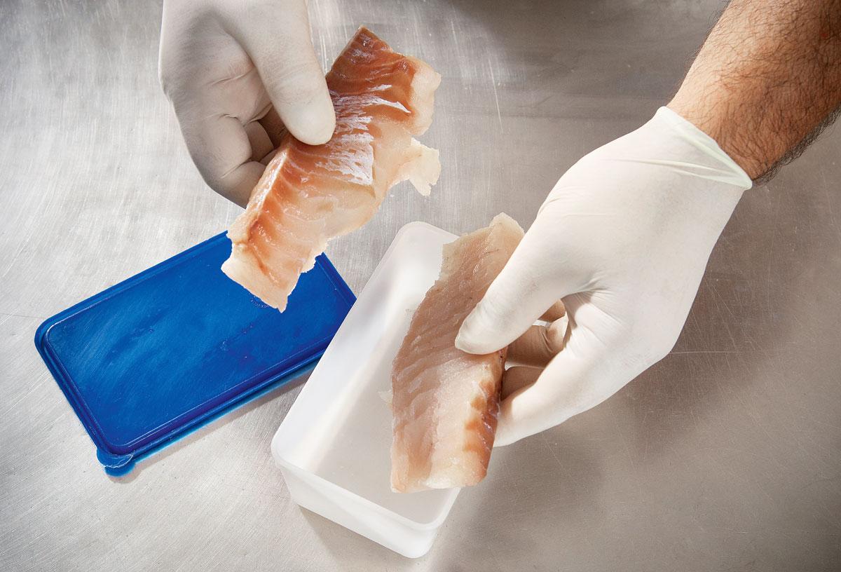 So hält Euer Gefriergut wesentlich länger frisch und bekommt keinen unansehnlichen Frostbrand. Foto: BLINKER/W. Krause