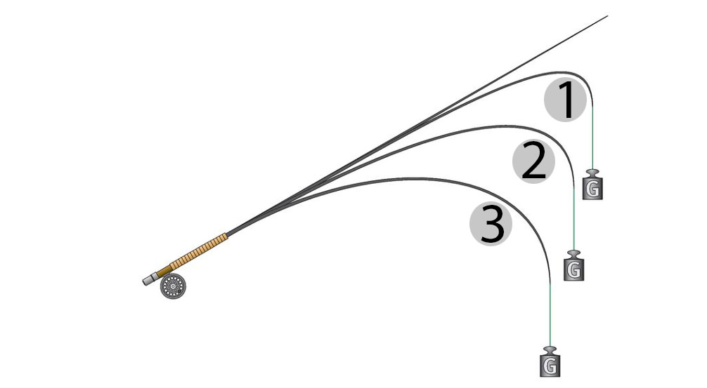 Ruten mit Spitzenaktionen (1) biegen im Gegensatz zu Ruten mit parabolischer Aktion (3) nur im Spitzenbereich. Grafik: BLINKER