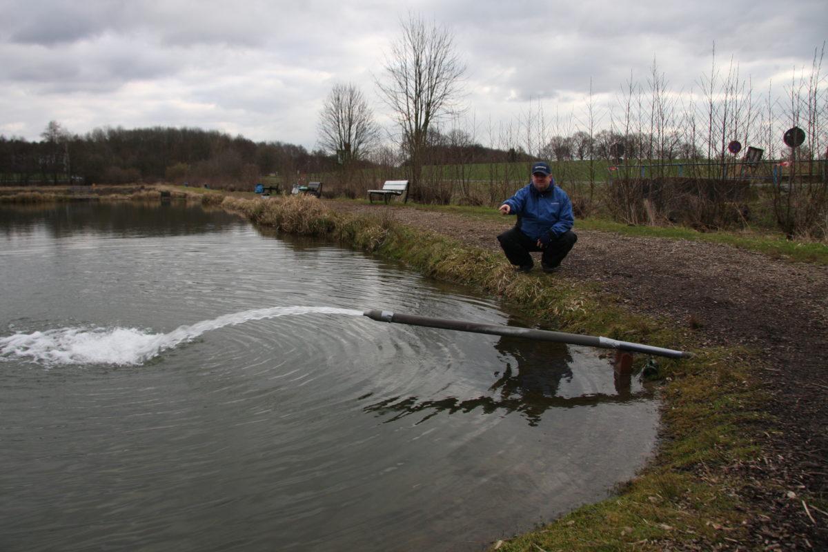 Am Einlauf kommt frisches Wasser in den See. Hier befindet sich ein echter Hotspot zum Forellenangeln. Foto: Gregor Bradler