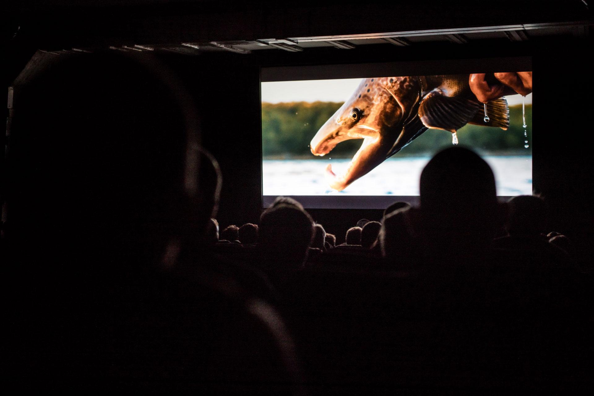 Das Hobby auf der großen Leinwand: Das RISE Fly Fishing Film Festival 2019 ist ein tolles Erlebnis! Foto: RISE Fly Fishing Film Festival 2019