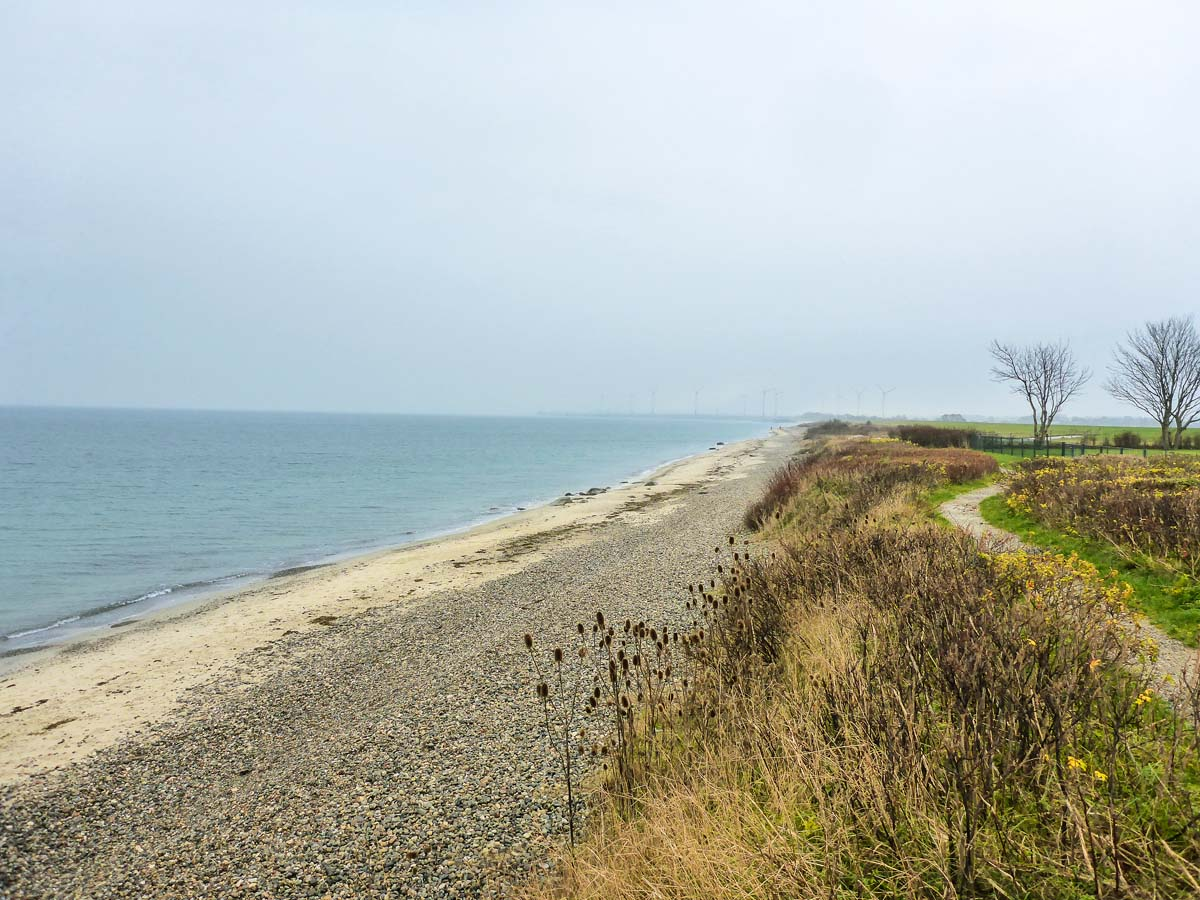 Der Strand bei Marienleuchte ist ein absolutes Top-Revier zum Meerforellen-Angeln auf Fehmarn. Foto: Blinker