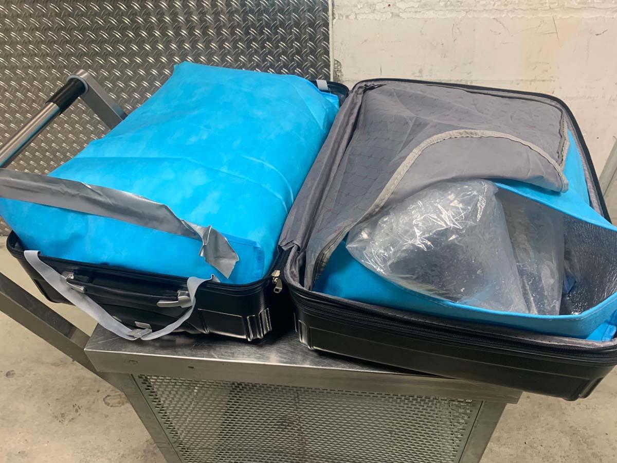 Dieser Koffer des Reisenden war vollgestopft mit Plastiktüten, in den sich die Jungaale befanden. Foto: Zollfahndungsamt Frankfurt a.M