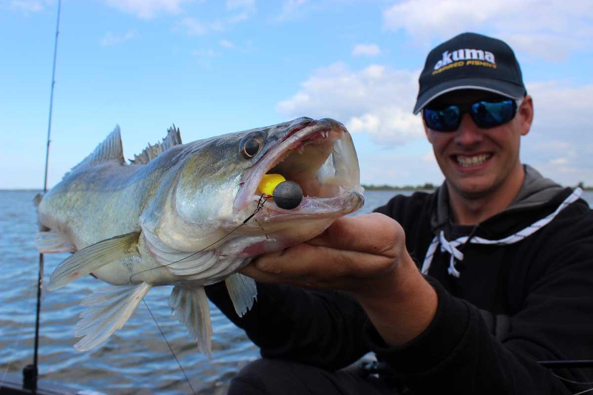 Gezielt große Zander und Hechte im Freiwasser fangen – das ist Pelagisch angeln! Foto: Blinker/Ch. Wieneke