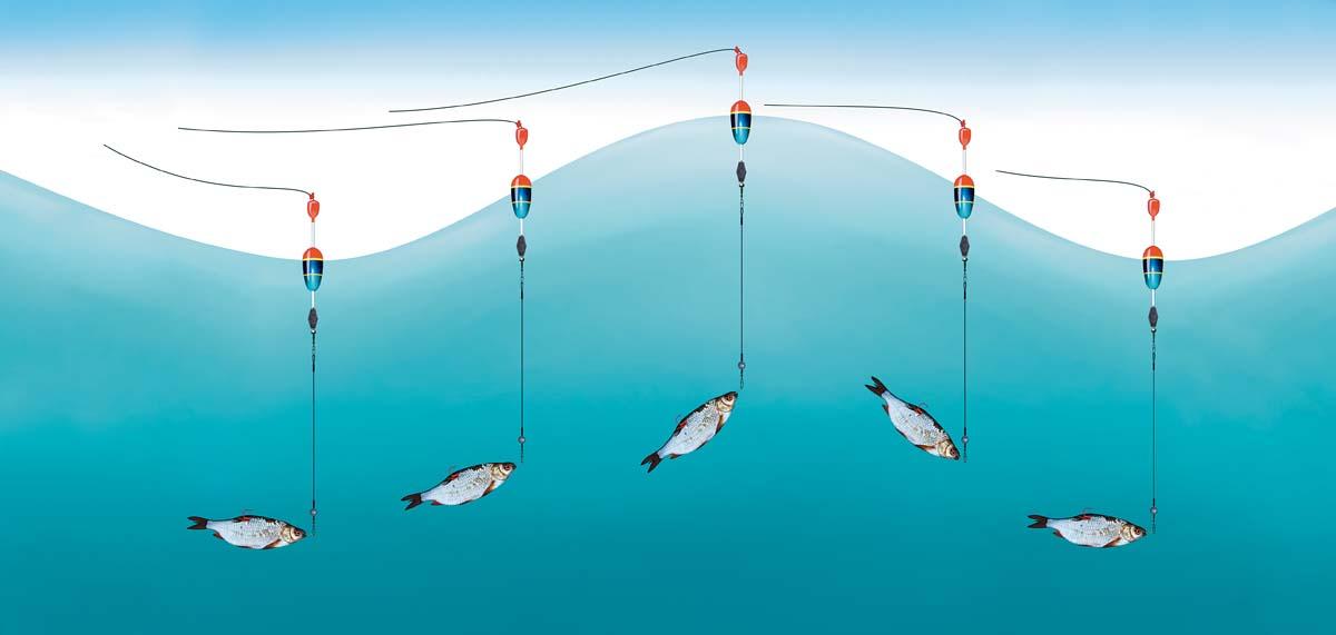 Wind und Wellen sorgen für ein Auf und Ab des Köderfisches an der Pose. Das lässt keinen Hecht kalt. Grafik: Jahnke