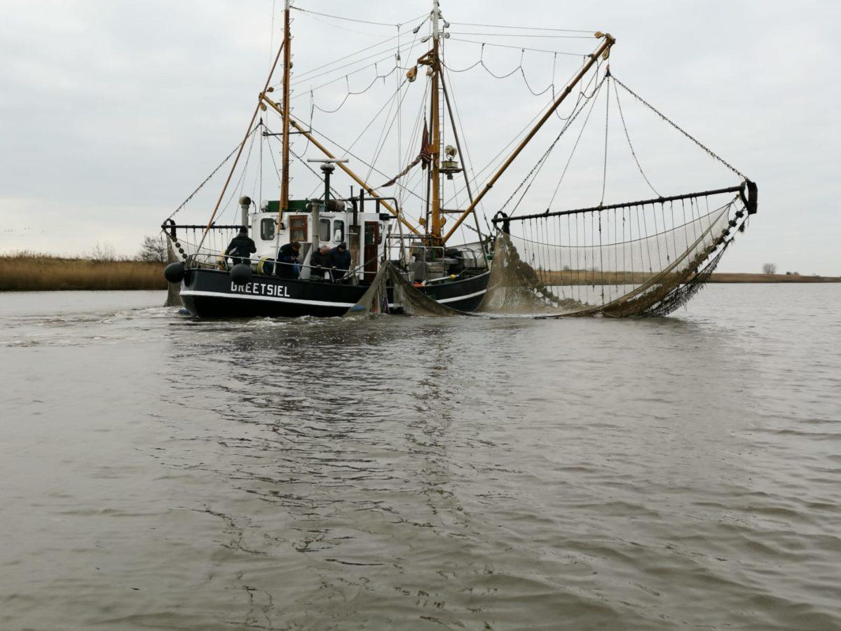 Auch ein Fischkutter half bei der Bestandskontrolle der Fische in den betroffenen BVO-Gewässern. Foto: E. Jibben