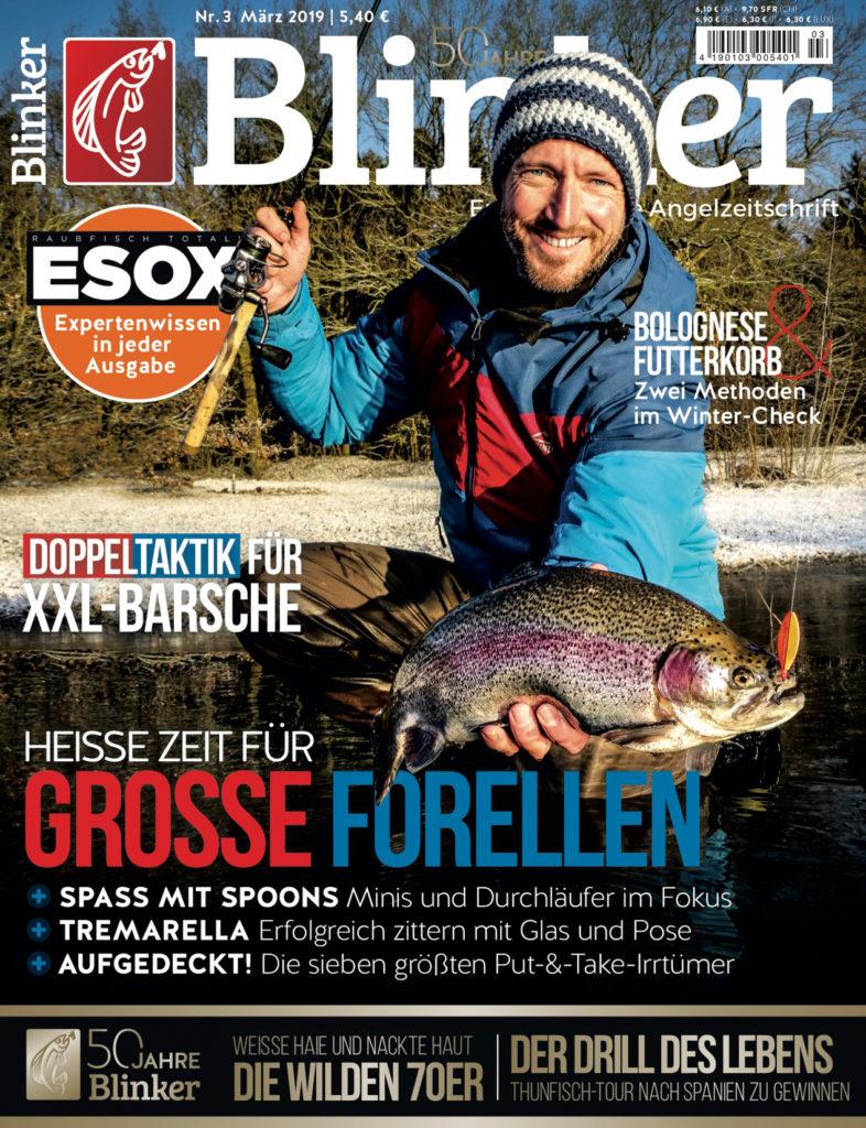Blinker 03/19