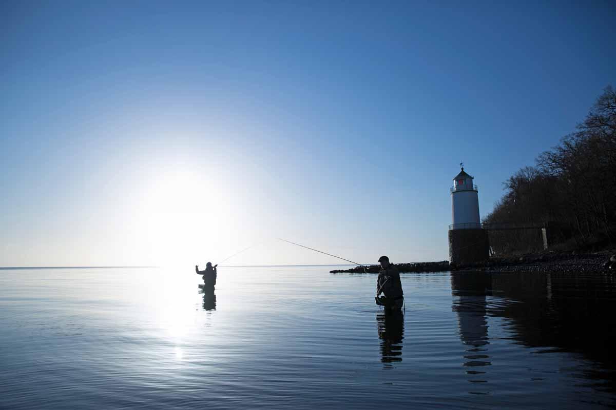 Die meisten Angler in Südjütland haben es auf Meerforellen abgesehen. Foto: Destination Sønderjylland