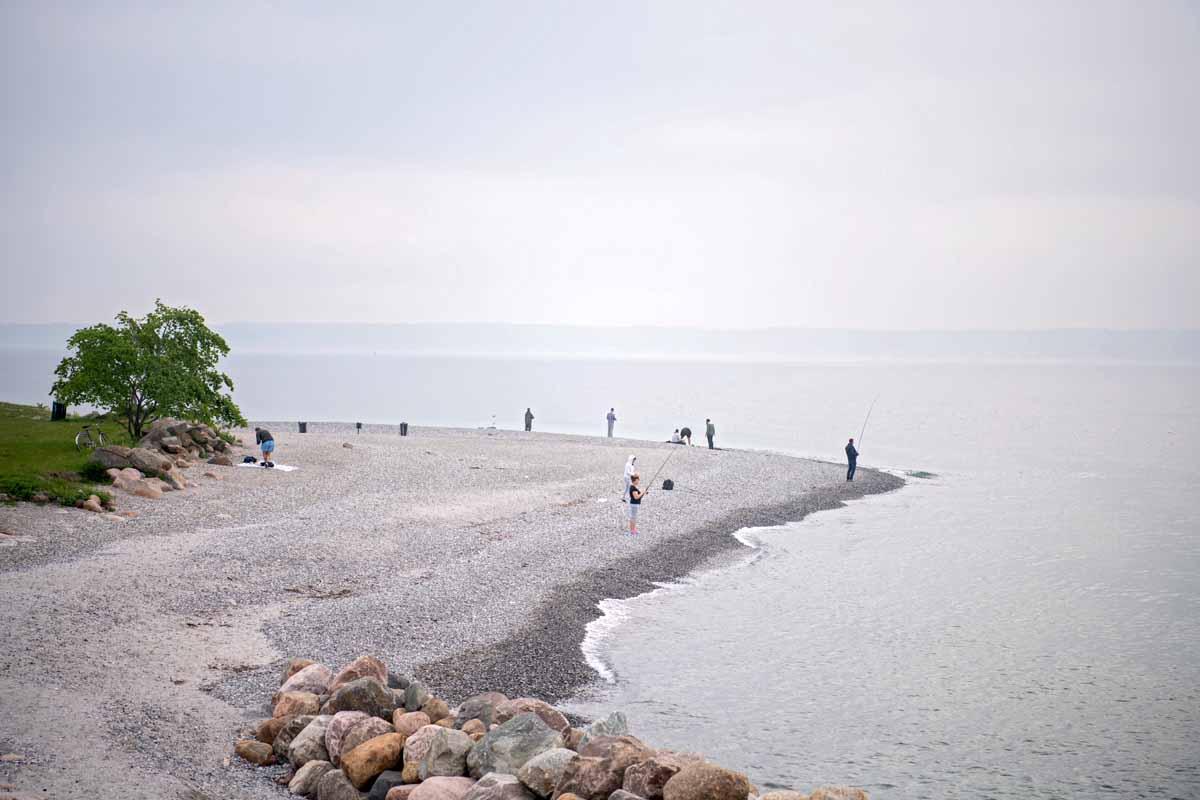 Die Küste von Nordseeland bietet fantastische Angelmöglichkeiten. Foto: T. Uffelmann