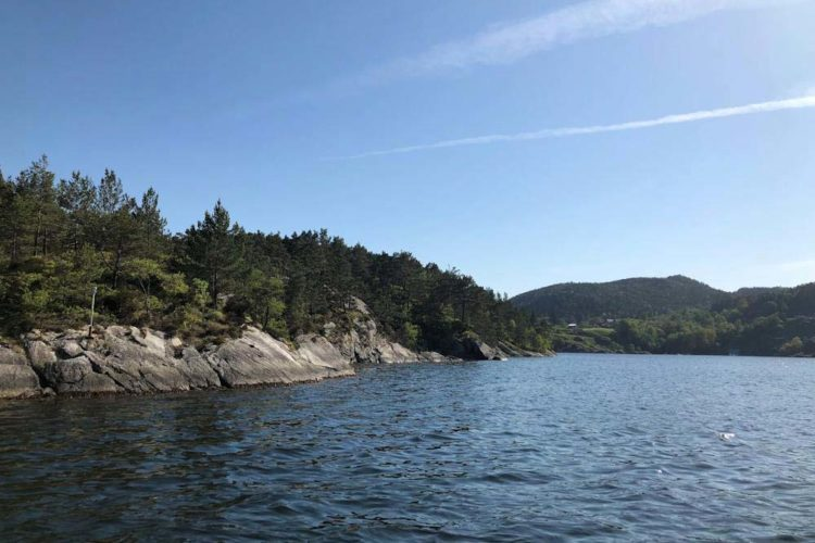Der Blick auf den malerischen Hervikfjord.