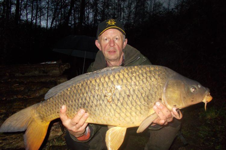 Heribert Hock gelang es, diesen 81er Karpfen auf einen Boilie im Ossi-See zu fangen.