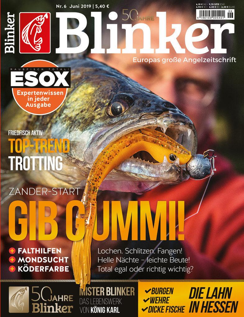 BLINKER 06/19