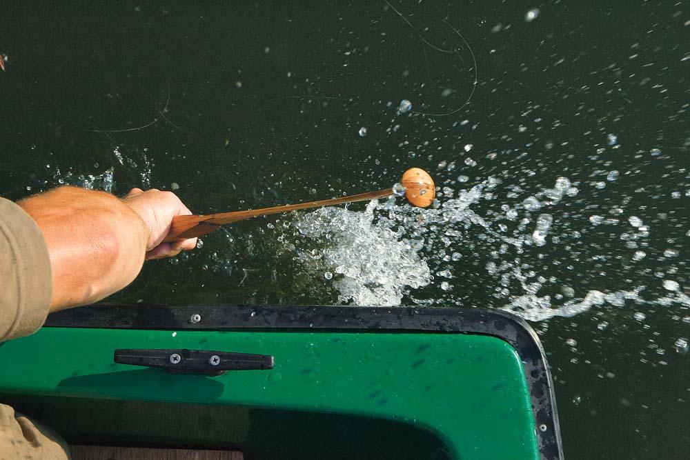 An Gewässern mit mäßigem Befischungsdruck kann der Einsatz des Wallerholzes die Fangchancen erheblich steigern.
