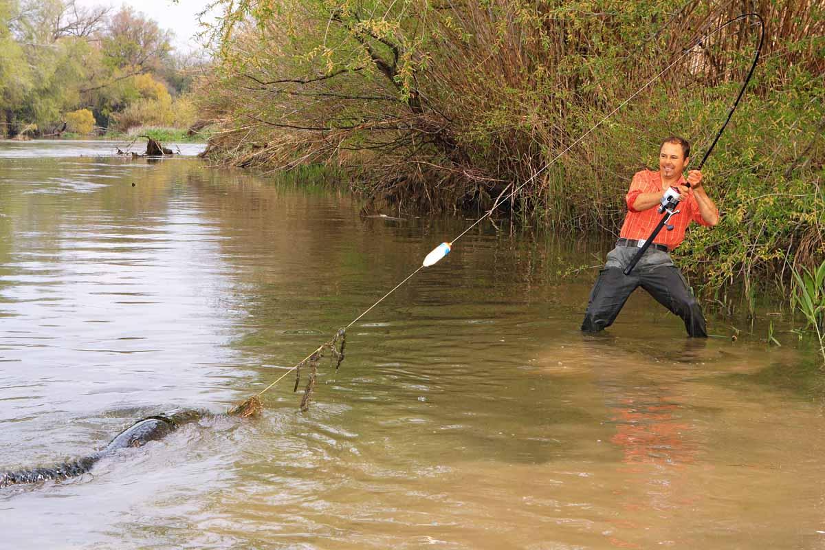Ist das Wasser trüb genug, sind auch am Tag knallharte Drills möglich. Foto: Blinker/O.Portrat