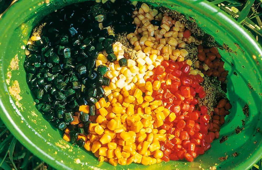 Mais gibt es mittlerweile in allen möglichen Farben. Er eignet sich sowohl zum Anfüttern als auch als Hakenköder.