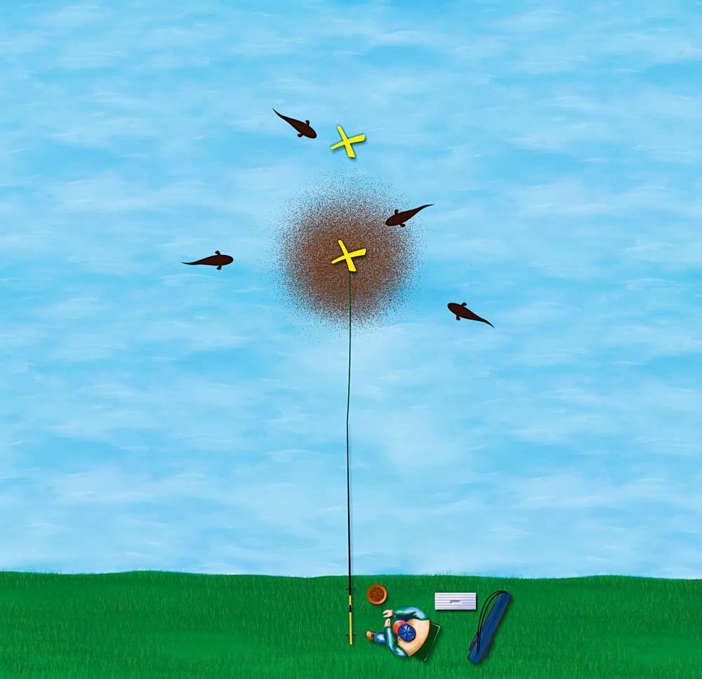 Bei der Punktfütterung wird das Futter auf eine möglichst kleine Fläche beschränkt. Die Punktfütterung ist vor allem an Kraut- und Seerosenfeldern erfolgreich, sofern man weiß, wo die Fische entlang ziehen, um Nahrung aufzunehmen. Oft machen die Karpfen aber durch Rollen an der Oberfläche auf ihre Fress-Straßen aufmerksam.