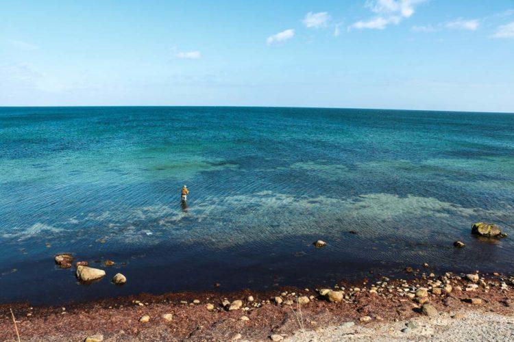 Das Angeln auf Langeland gilt als die Wiege des Meeresangelns. Ob Meerforelle, Dorsch oder Plattfisch: Das Revier hat bis heute nichts an seiner Faszination verloren.