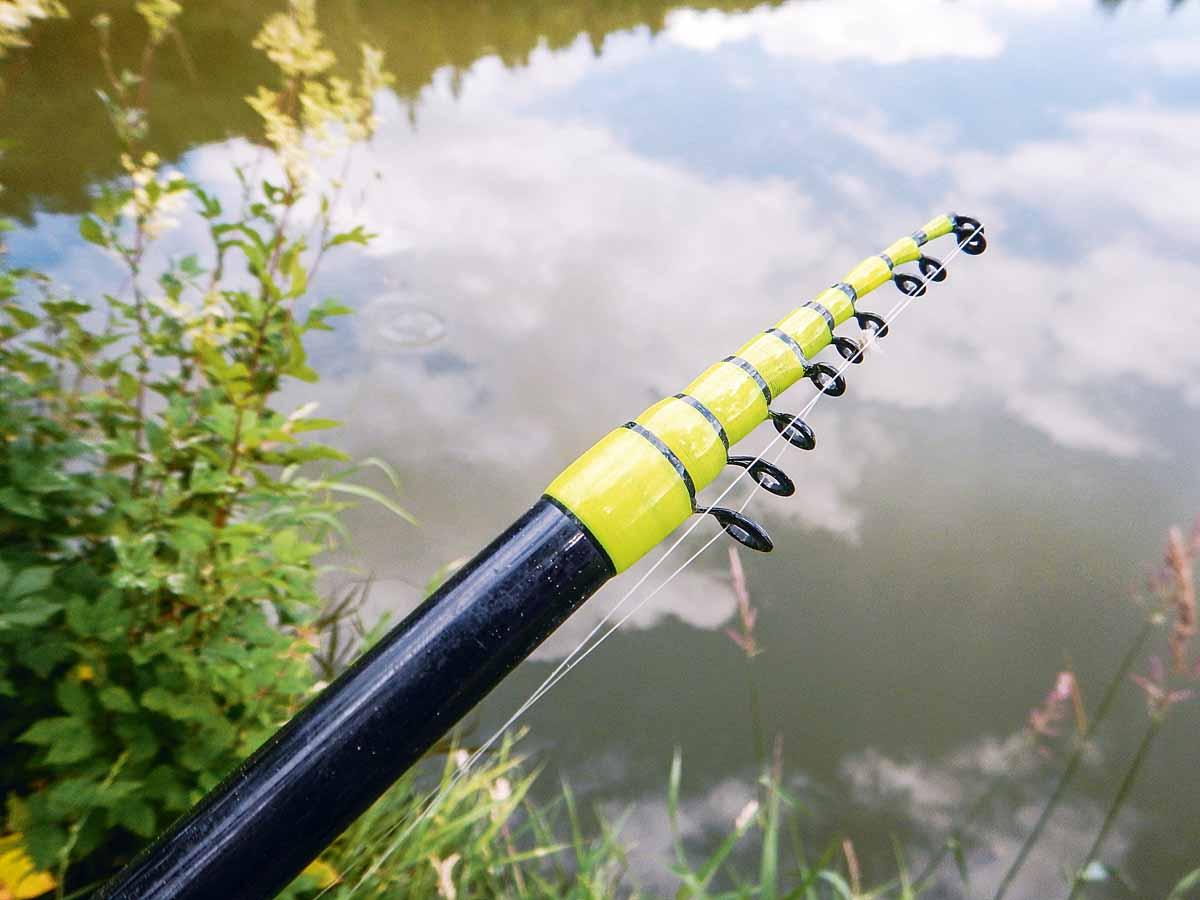 Einige Angler sehen Teleruten zu unrecht mit Skepsis. Foto: Blinker/Carsten Neumann