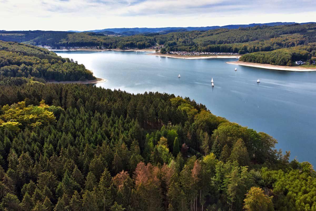 Angeln im Sorpesee verspricht nicht nur anglerisch einen hohen Spaßfaktor, sondern auch landschaftlich hat das Gewässer viel zu bieten. Der Stausee liegt eingebettet in eine schöne Waldlandschaft.
